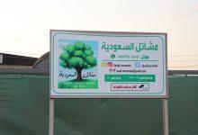 Photo of تغطية مشاتل السعودية بالصور عدسة : سعد المهنا