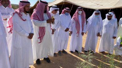 Photo of برعاية محافظ ثادق المكلف  تدشين حملة التشجير لنجعلها خضراء بمنتزه عبيثران بثادق