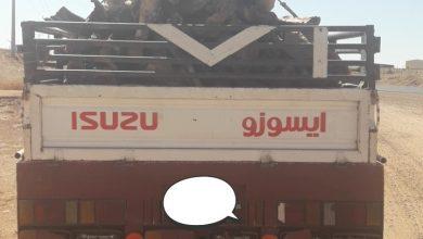 Photo of مكتب  وزارة البيئة والمياه والزراعة بمحافظة شقراء يقوم بضبط ٢ شاحنة محملة بالحطب المحلي