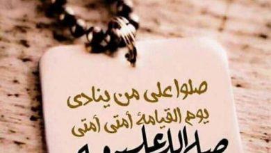 Photo of أرباق الحمير . بقلم : منئ الثبيتي